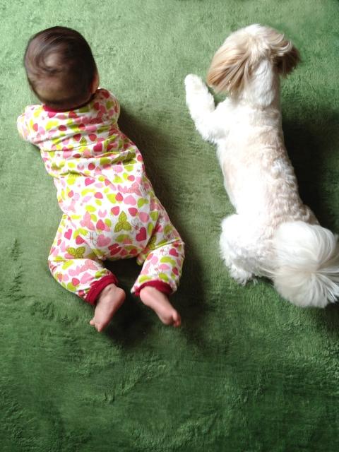 赤ちゃんと 外出