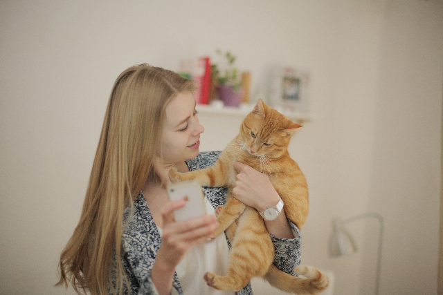 猫好き プレゼント