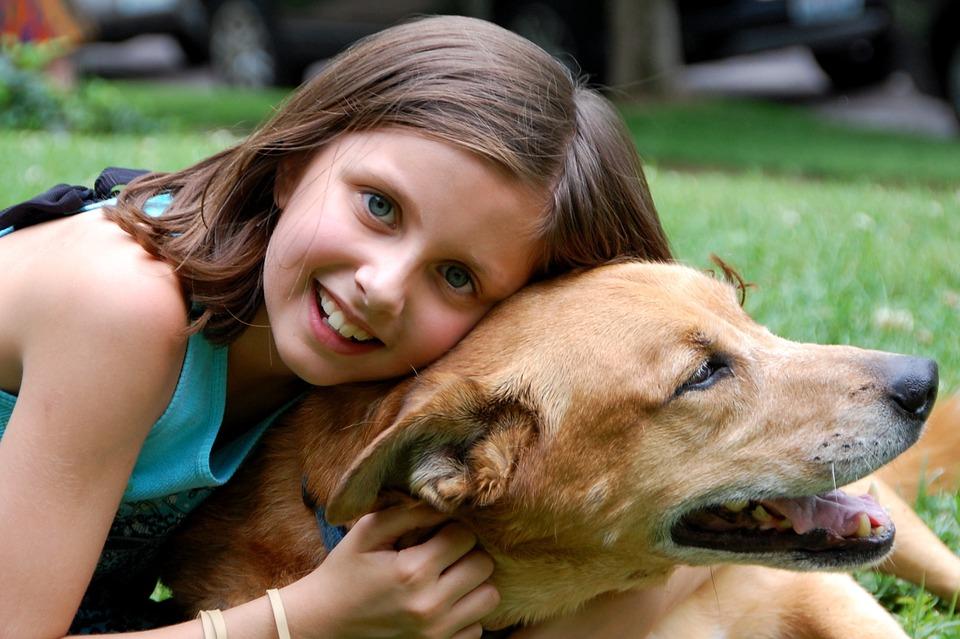 犬好き 彼女